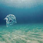声明:海洋プラごみ対策は、生産・消費の大幅削減を第一に
