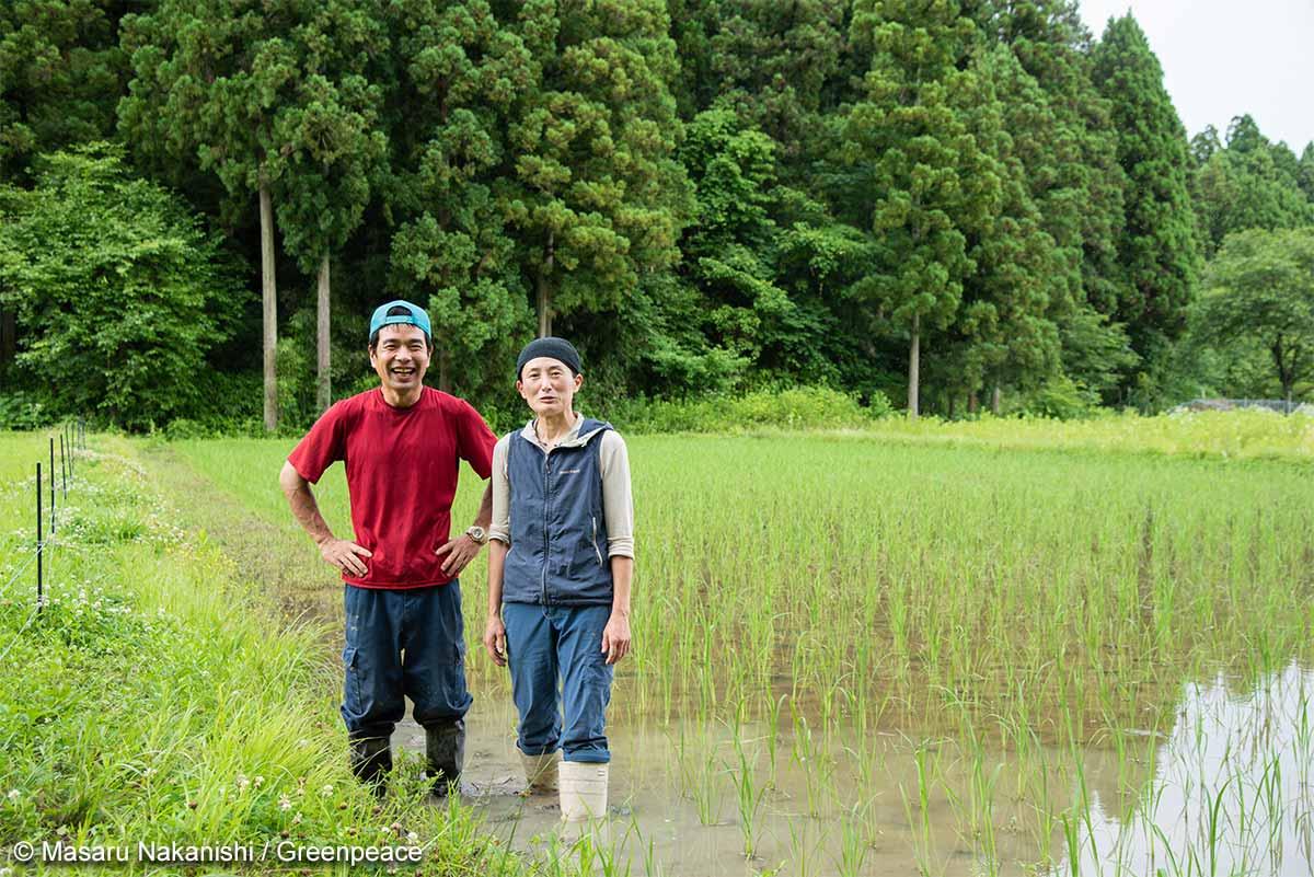 自然栽培お米農家の本音トークをお届けします