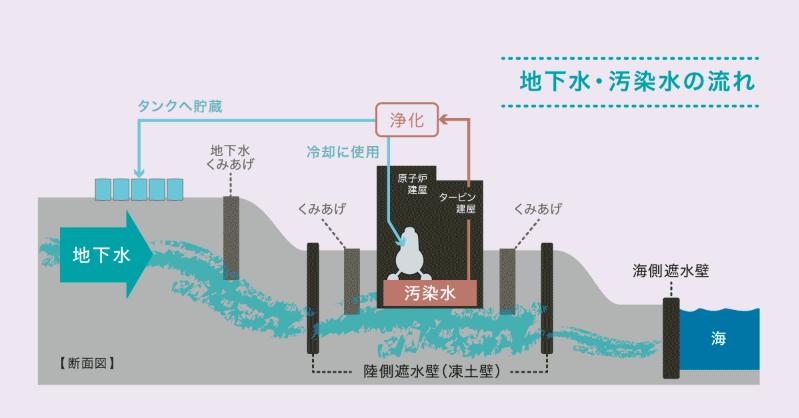 地下水・汚染水の流れ