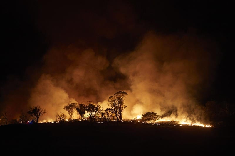 オーストラリアの山火事でわかった企業の役割