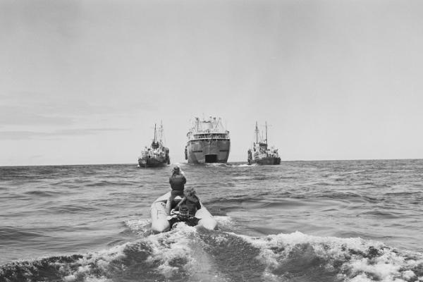 1975년 고래 보호 캠페인으로 포경선과 마주섰던 당시 그린피스 활동가들