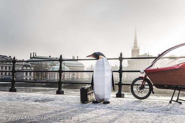 남극으로 가는 길에 들린 한겨울 스톡홀름에서