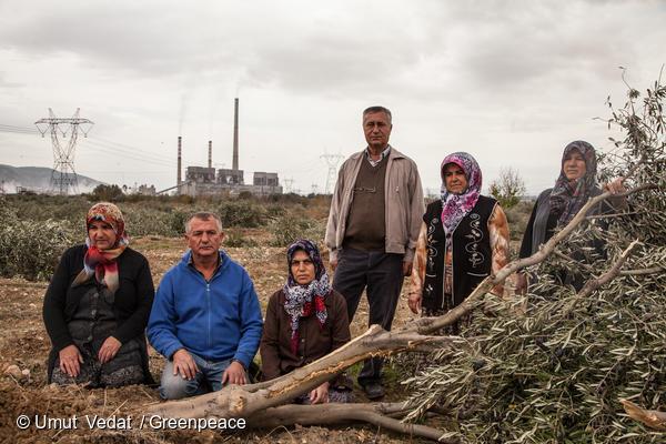터키의 Yica마을 주민들이 석탄발전소 건설을 위해 불법적으로 벌목된 6000여 그루 나무를 증거로 보여주고 있다.
