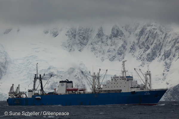 The Korean krill trawler Sejong off the coast of Trinity Island in the Gerlache Strait, Antarctic.