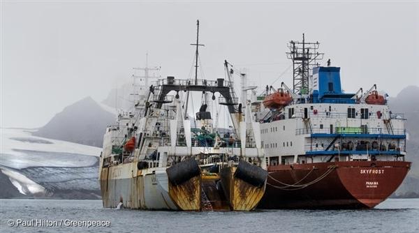 남극해 리빙스턴 아일랜드에서 목격한 크릴 어선 두 척