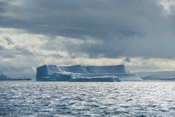 안타틱 사운드(Antarctic Sound)의 빙하