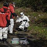 후쿠시마 원전 사고 후 9년...일본 정부 방사능 제염 실패