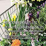 Pesticides dans les plantes ornementales – Echantillons en vente au Luxembourg