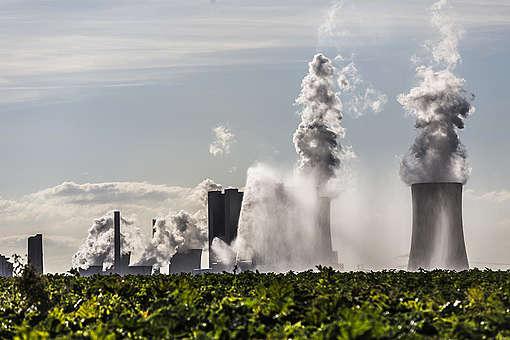 Braunkohlekraftwerk Neurath und Zuckerruebenfeld. © Bernd Lauter
