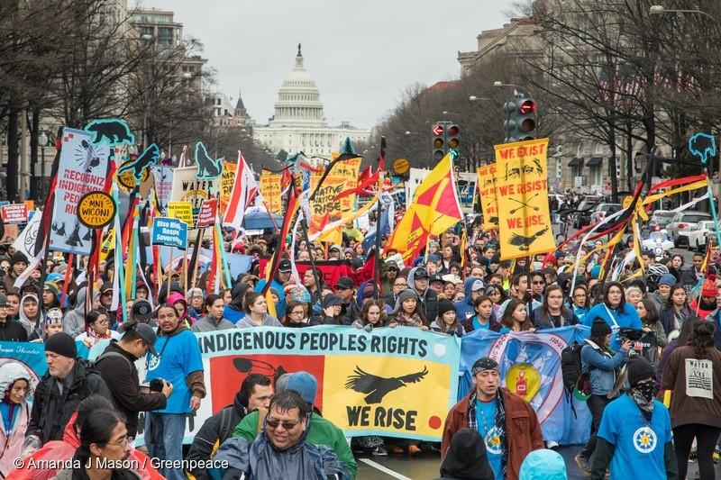 Tausende marschierten durch Washington DC, um sich solidarisch zu zeigen mit den indigenen Völkern, die sich gegen den Bau der Dakota Access Pipeline wehren.