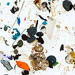 Microplastics from German Rivers. © Fred Dott