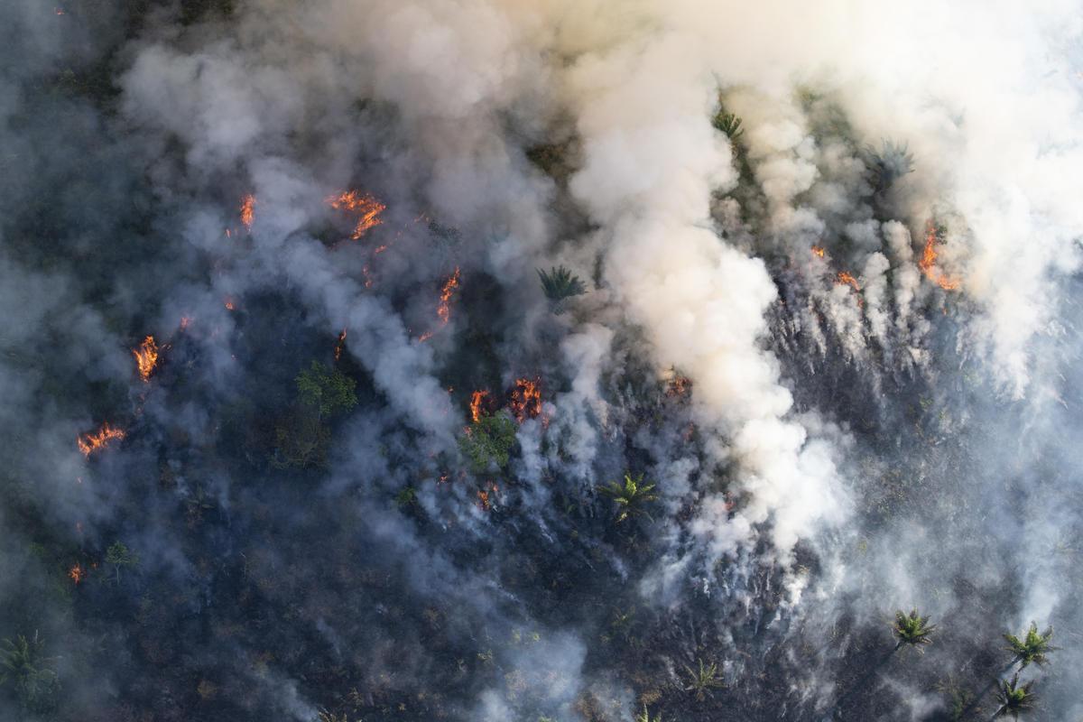 Forest Fires in Brazilian Amazon 2018. © Daniel Beltrá / Greenpeace