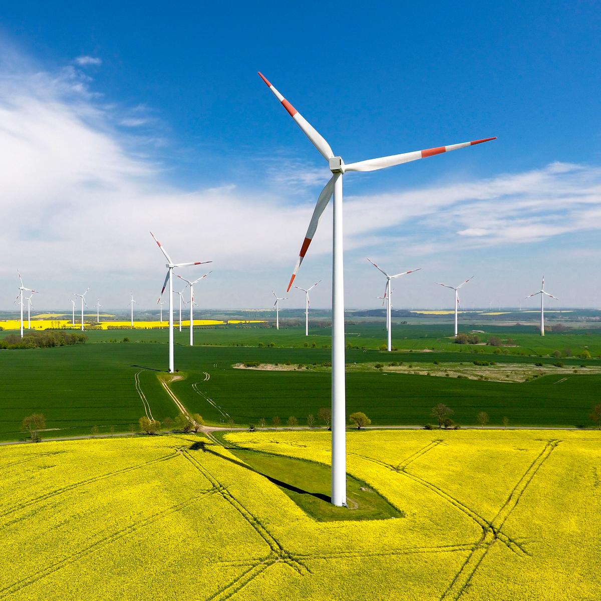 Wind Parc Gramzow. © Paul Langrock