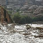 رد غرينبيس على الظواهر المناخية المتطرفة التي تشهدها المنطقة