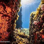 جبال ضخمة تحت البحر.. إليك خمسة أشياء تحتاج إلى معرفتها: