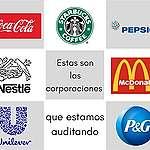 ¿Qué marcas están en tu alacena? Haz una auditoría