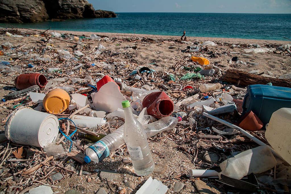 Plastic Brand Audit Activity in Greece. © Constantinos Stathias