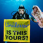 Plastic Found in the Great Pacific Garbage Patch. © Justin Hofman