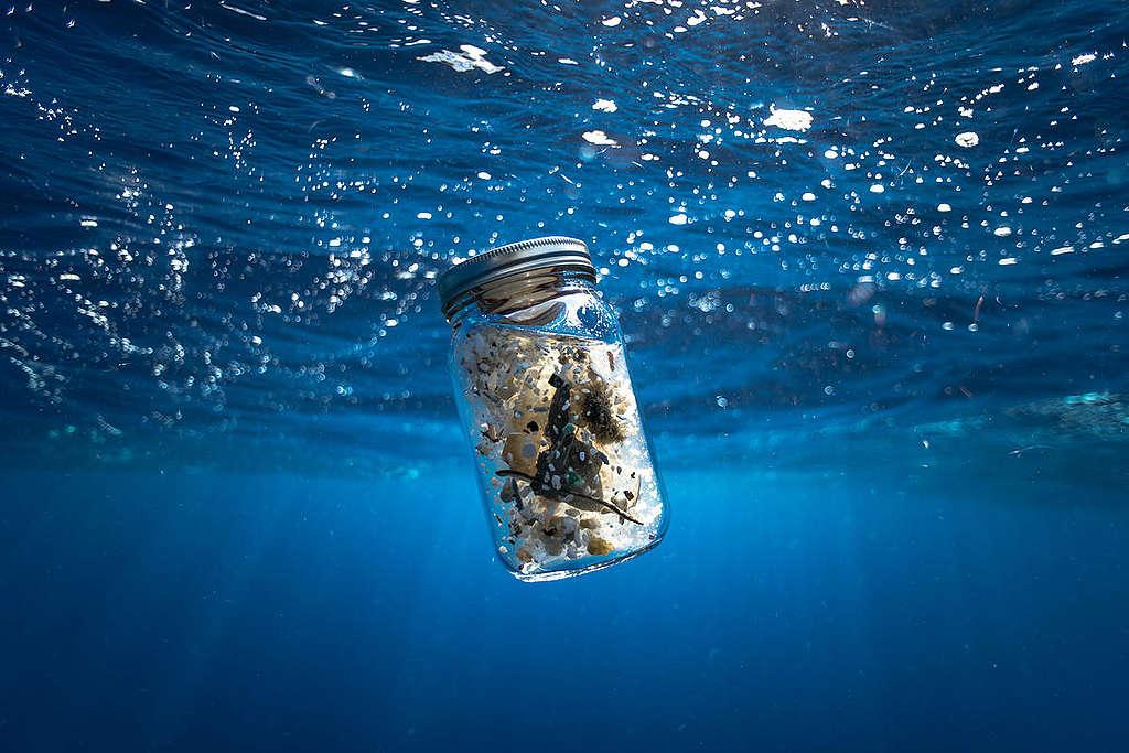 Desechos plásticos en el Océano Pacífico © Justin Hofman