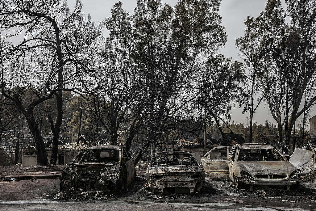 Destroyed Cars after Wildfire in Israel. © Greenpeace