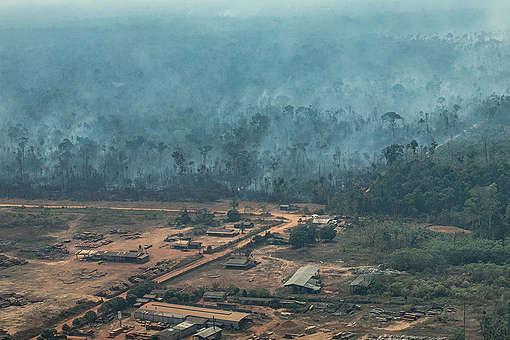 Protejamos el Amazonas