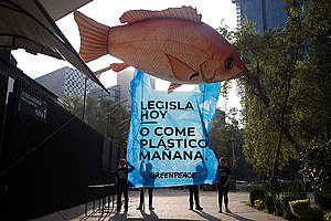 Plastic Banquet at the Senate of the Republic in Mexico. © Ilse Huesca Vargas / Greenpeace