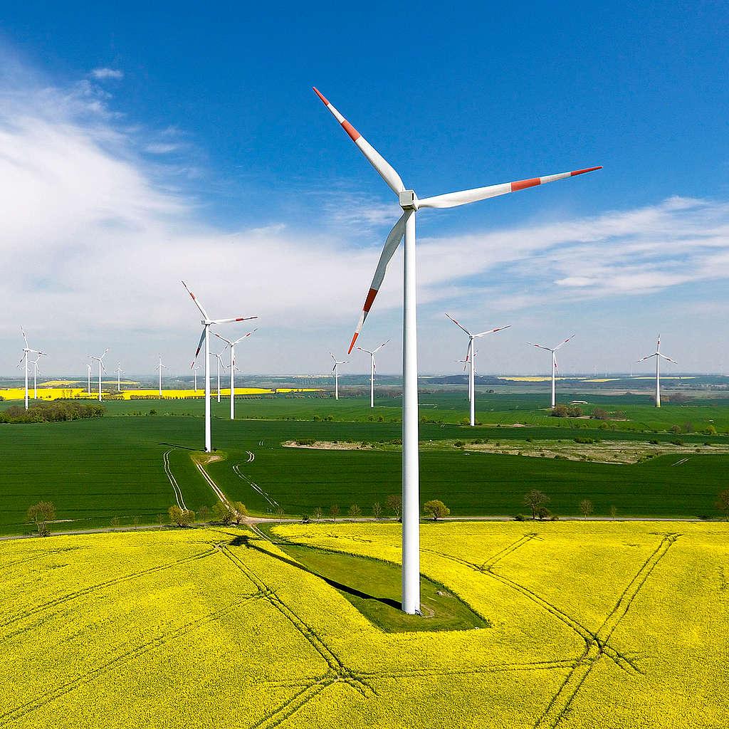Energía eólica. ¡México puede ser renovable!