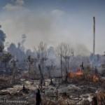 Sorry, but not sorry: multinationals blijven regenwouden vernietigen