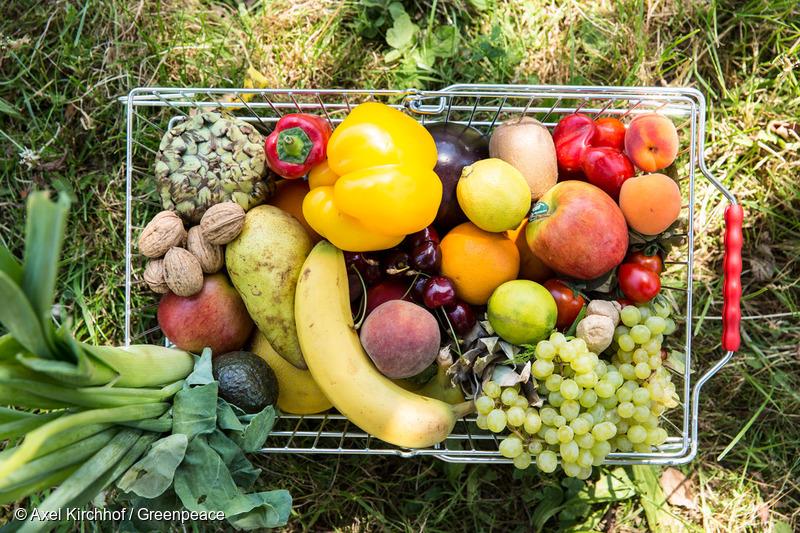 Einkaufskorb mit Obst- und Gemuesesorten, die durch  Bestaeubung durch Bienen zur Verfuegung stehen.(c) Axel Kirchhof/Greenpeace22.07.2013
