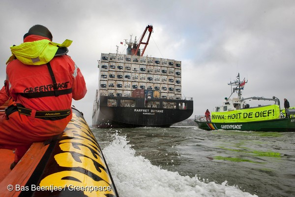 Netherlands, Rotterdam November 06 2014A ship carrying Amazon timber, purchased from a sawmill know for trading illegal wood, was today confronted by Greenpeace Netherlands activists as it approached Rotterdam. The timber onboard is destined for the Belg