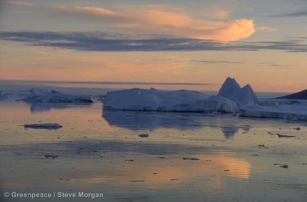 Icebergs melting in low sun