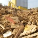 Greenpeace dreigt met stap naar rechter vanwege bijstoken biomassa door kolencentrales