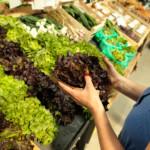 Brief aan de Algemene Commissie voor LNV over oneerlijke handelspraktijken in de voedselketen