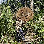 Beste bosbeschermers