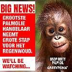Palmoliegigant Wilmar belooft concrete stappen om keten vrij te maken van foute palmolie