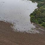 Overstromingen in Noord-Argentinië door illegale boskap