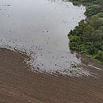 Greenpeace onthult: overstromingen in Noord-Argentinië door illegale boskap