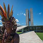 Wetenschappers slaan alarm over impact EU-handel met Brazilië