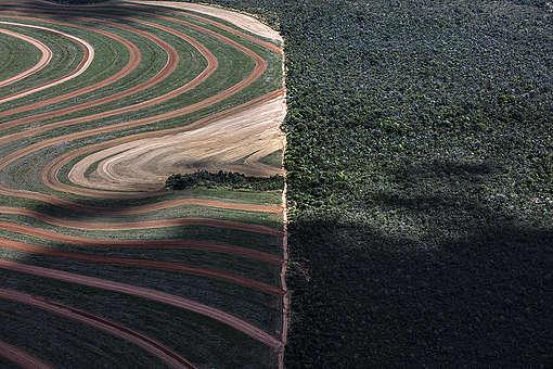 iness Rush in the MATOPIBA Region, in BrazilAvanço do agronegócio na região da MATOPIBA, Brasil.