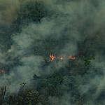 De Amazone staat in brand