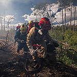 Dit moet je weten over de bosbranden in Oost-Siberië