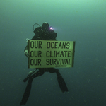 Diver with a banner, 25 meters deep