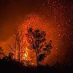 Zijn ze er nog, die bosbranden?