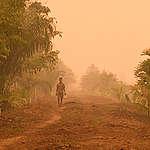 Unilever: mooie beloftes en tóch betrokken bij Indonesische bosbranden voor palmolie