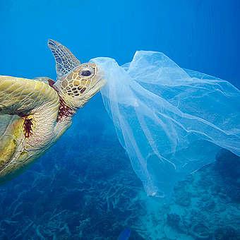 Wereld zonder wegwerpplastic