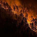 Siberië: nu al 19 miljoen hectare in vlammen op