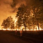 Greenpeace reist door Nederland met fototentoonstelling over bosbranden
