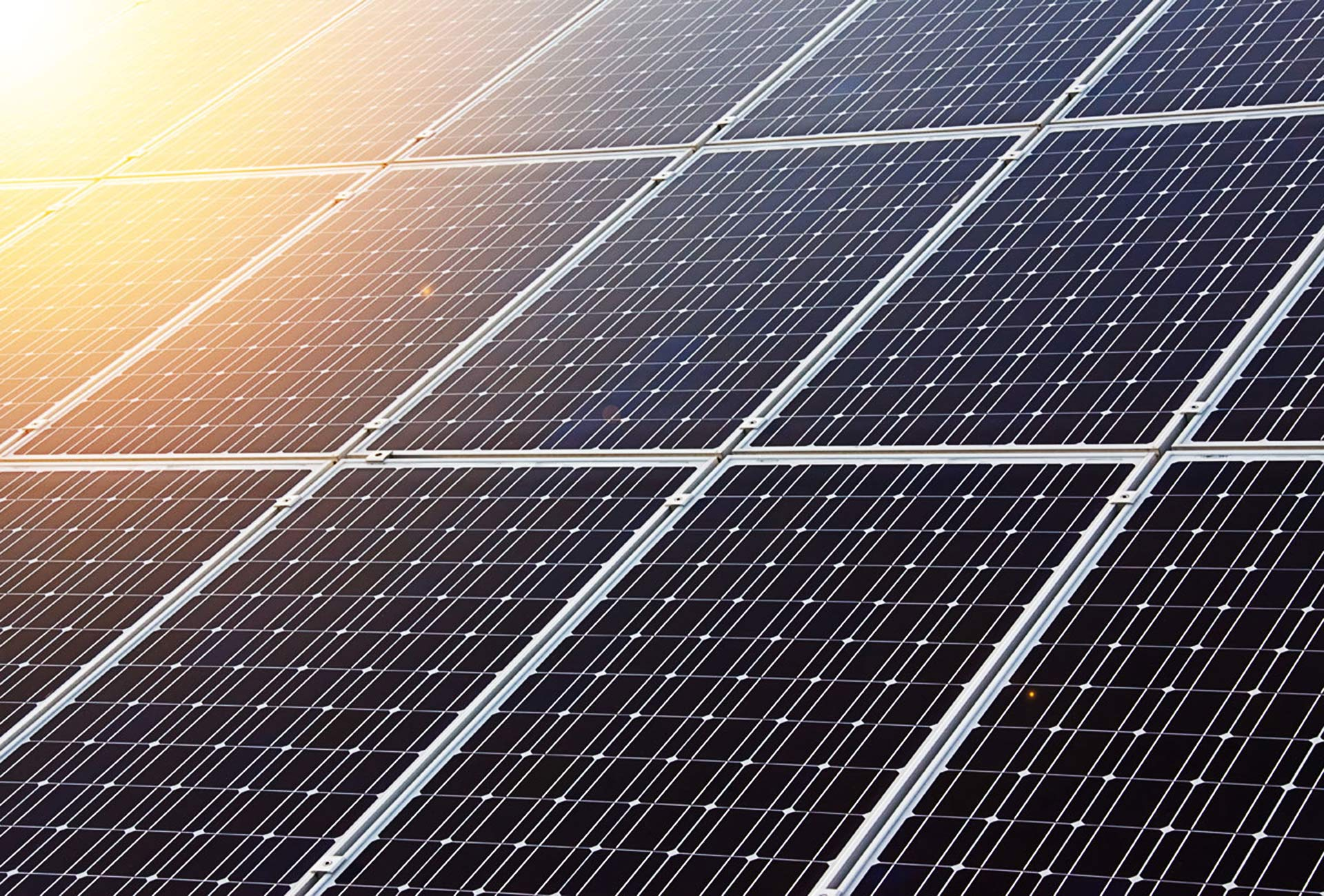Greenpeace welcomes Green Party plan to boost solar and end coal/gas