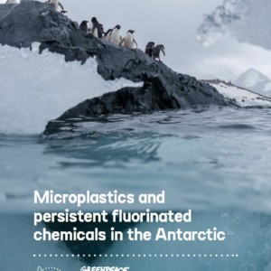 Plastic pollution reaches the Antarctic