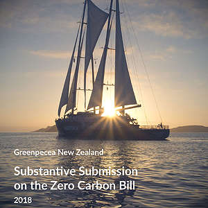 Substantive Submission on Zero Carbon Bill